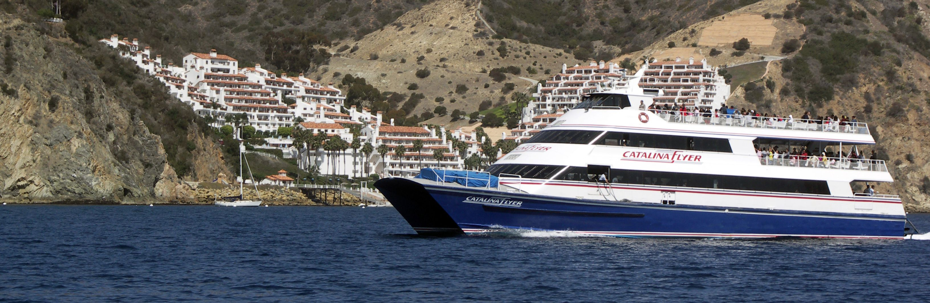 Catalina coupons jobs